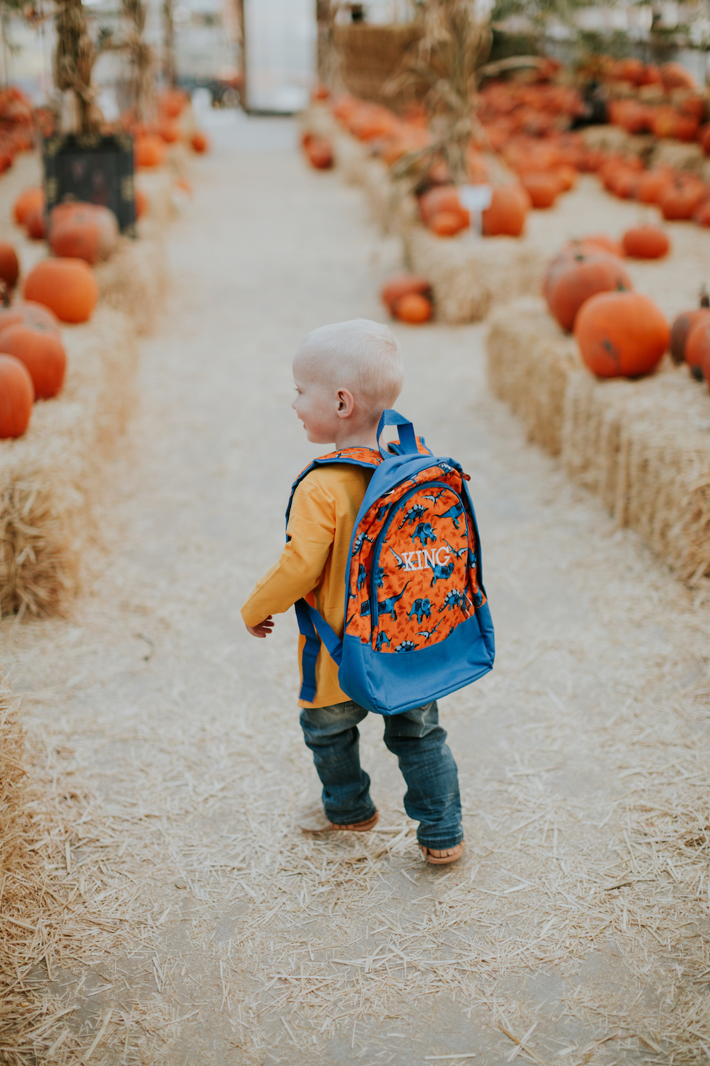 little boy running in pumpkin patch in june and january cardigan and stripe tee with dinosaur backpack