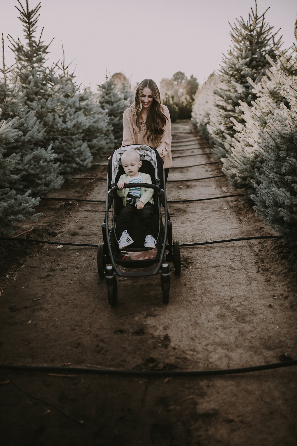 View More: http://kelsieemmphotography.pass.us/christmas-tree-farm
