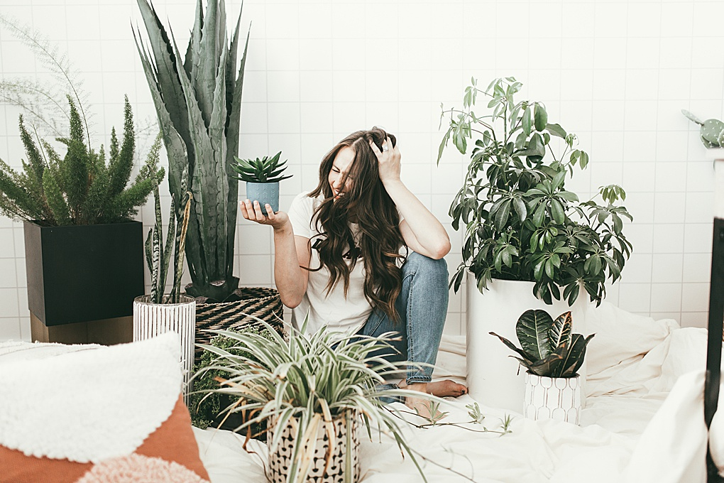 My Favorite House Plants | Dani Marie Blog