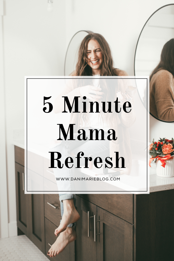 Only have 5 minutes? Need a makeup refresh! Utah Lifestyle Blogger Dani Marie is sharing her 5 minute makeup refresh. Click to see it HERE!